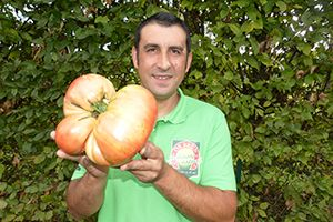 concours-national-vendee-record-tomate-boudyo-potager-extraordinaire